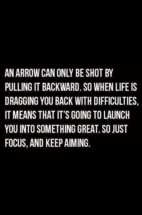 Arrow Quotes Life Extraordinary Revel Wisdomon Being Propelled Onward  Revel In It Mag