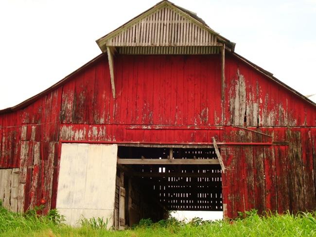 Broke Down Red Barn Kentucky